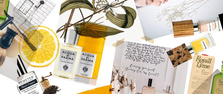 Fragrance 101 Part 1